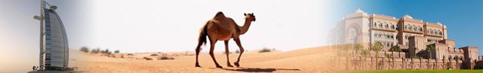 reiseziel_australien